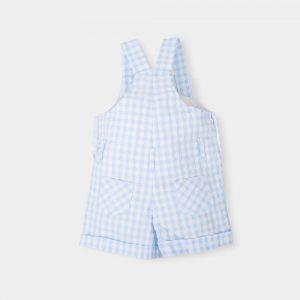 baby-jongen-geruite-blauw-wit-salopette